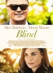 Blind 2017 Türkçe Dublaj 1080p FullHD İzle
