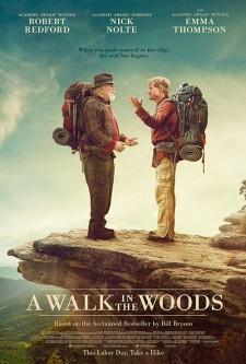 Hayatımın Yolculuğu — A Walk in the Woods 2015 Türkçe Dublaj 1080p HD İzle
