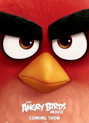 Angry Birds Full izle