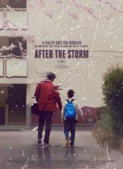 Fırtınadan Sonra Full HD Film izle