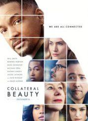 Gizli Güzellik Collateral Beauty