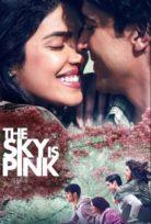 Gökyüzü Pembedir The Sky Is Pink – Türkçe Altyazılı
